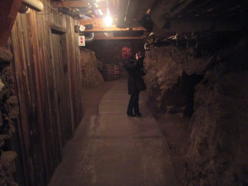 "The ""tunnel"" is a basement space under the hotel, which was built on rock and petrified roots. Very spooky."